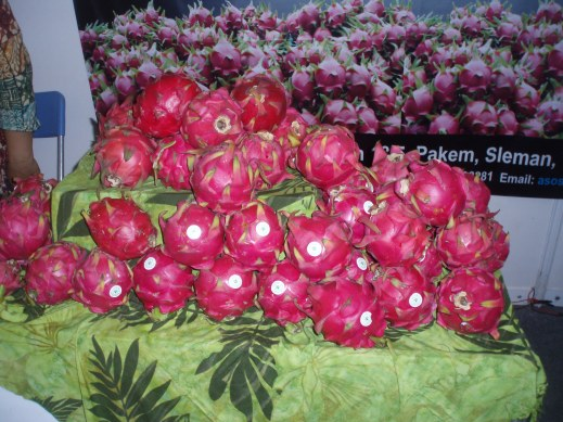 Heap of dragon fruit