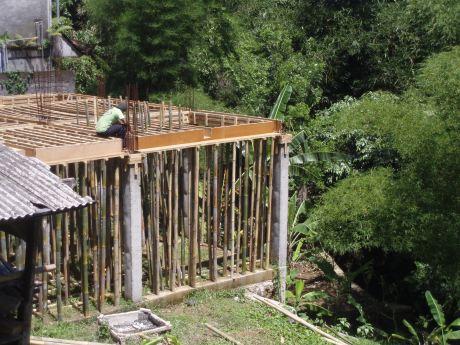 Bamboo bonanza