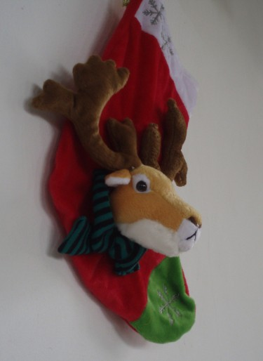 Rudolph on my wall