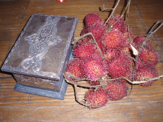 Trinket box and rambutan fruit - for buying doors!