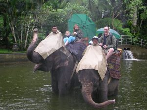 Tamsin, Tim and Rousseau on Elephants
