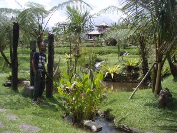 Lovely gardens at Prana Dewi