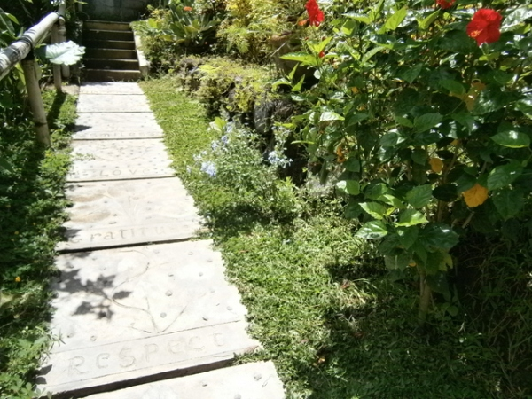 Leaf imprinted pathway