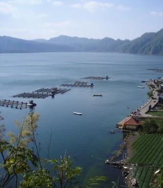 Fish farm in Lake Batur