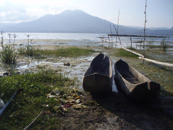 Hollowed out trees become fishermen's canoes