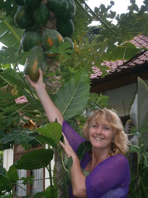Pick a  ripe papaya