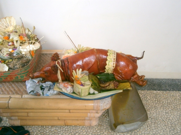 Babi guling (suckling pig)