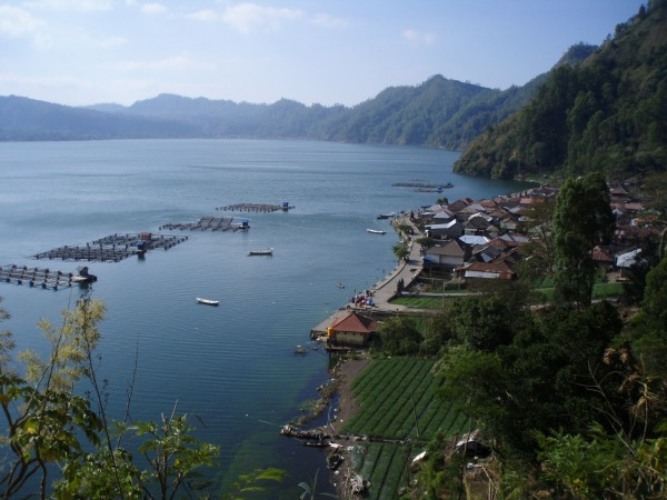 Fish farms in the lake