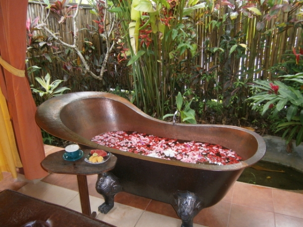 Flower bath by the garden