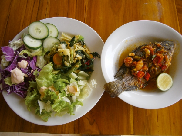 Fish with salad