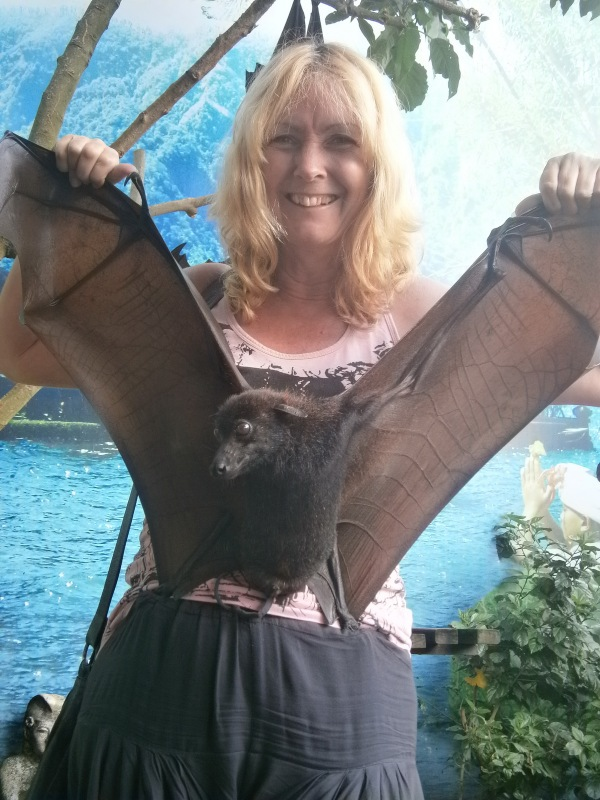 'Holy bat cave, Robin'